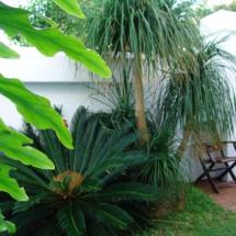 courtyard-diaz15